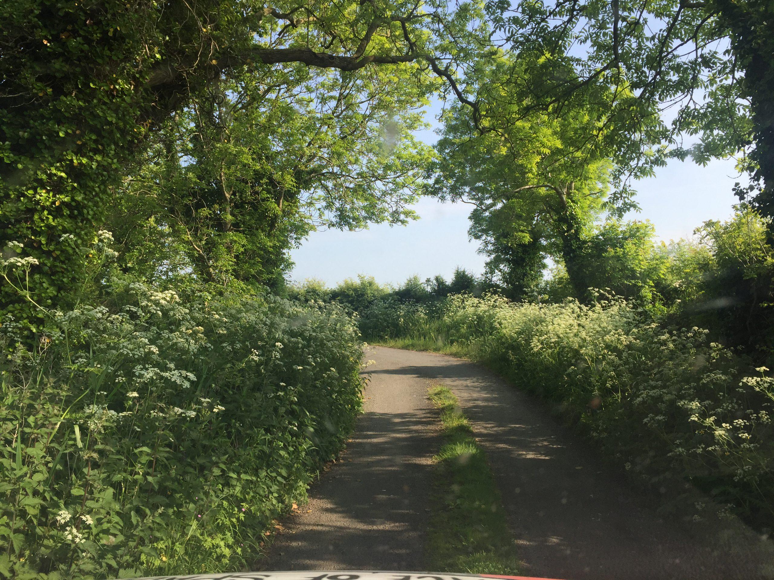 Day 7: The Scenic Irish Backroads Tourists Never See #HIUK16